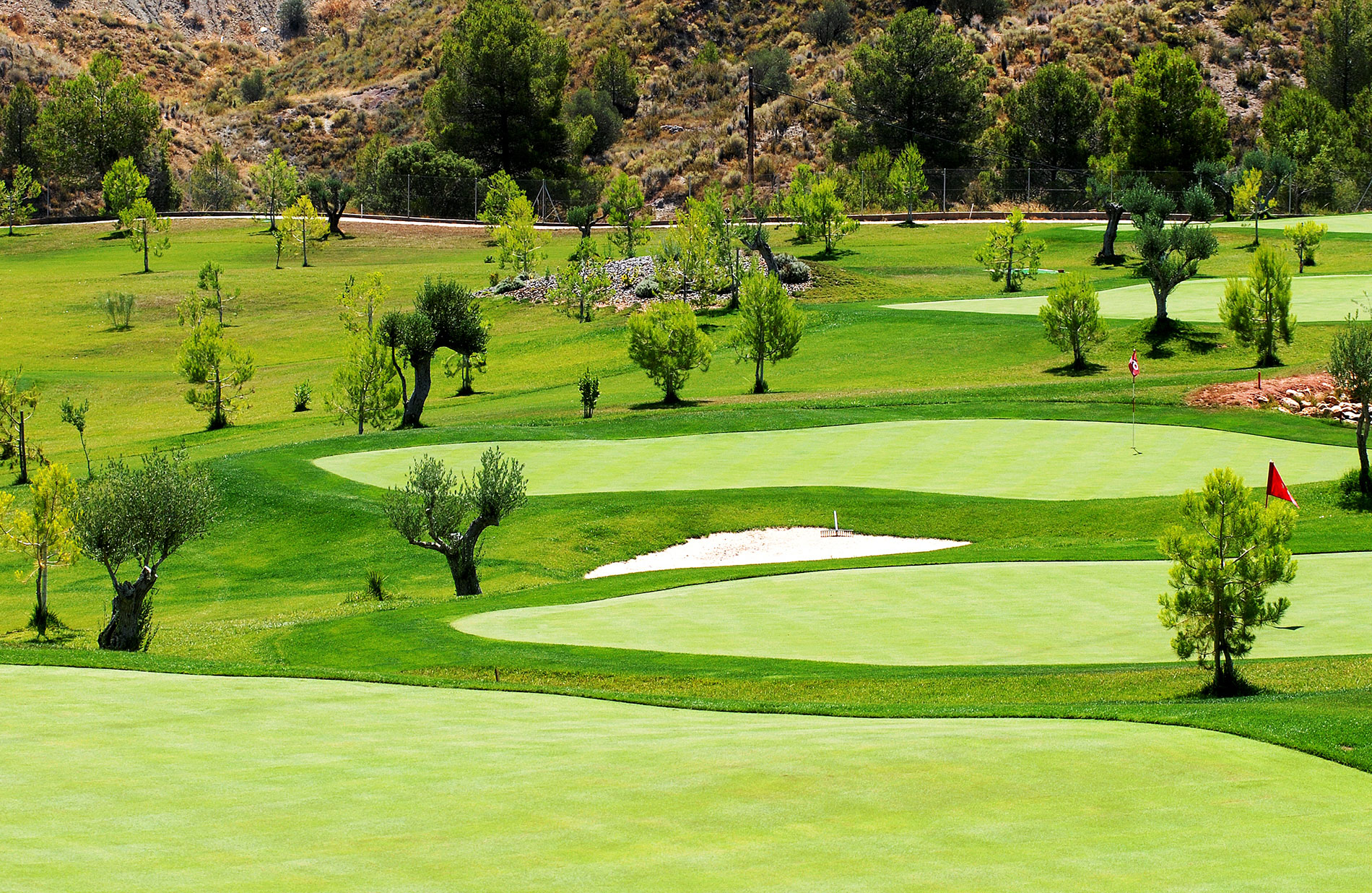 Pitch-&-Putt-Cofrentes-Golf-(15)